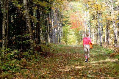 trail heaven