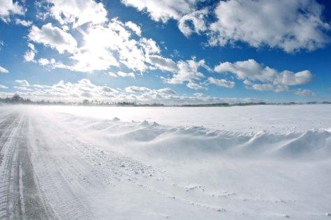Last winter Metro Minnesota