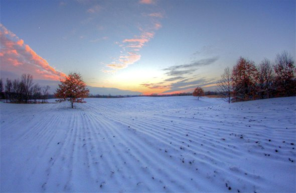 parkland sunset