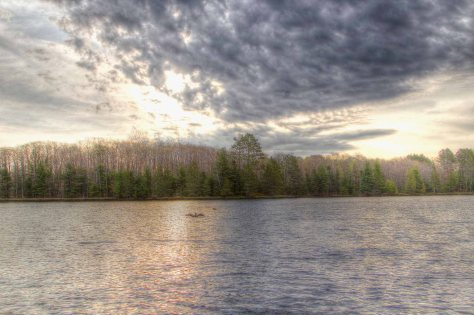 cloudy start loons